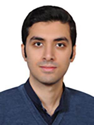محمد ابراهیم آریانی